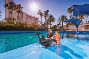 Sigfried & Roy's Secret Garden And Dolphin Habitat Las Vegas