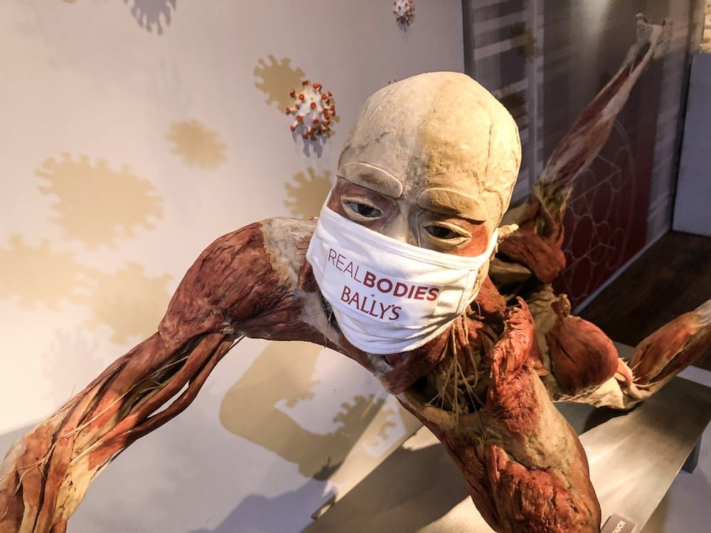 Real bodies Bally's Las Vegas Face Mask